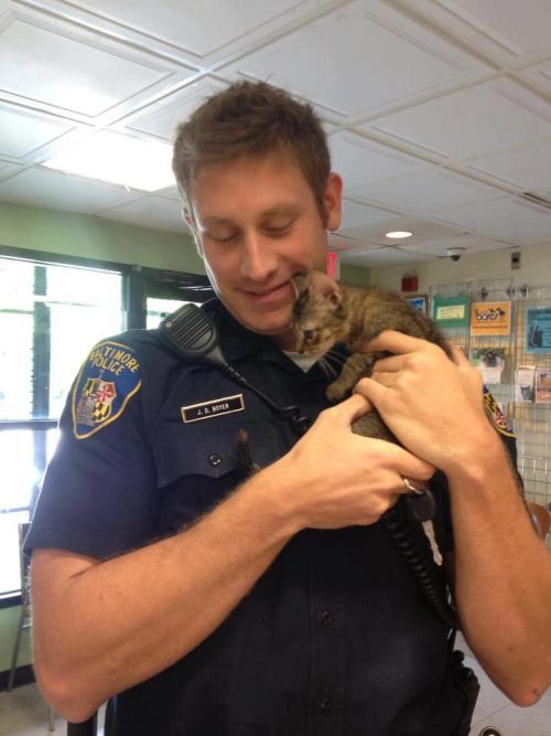 "wiggliejigglie:  catsbeaversandducks:  ""Officer Boyer came to the rescue twice today. First when he came to the aid of a stray kitten and again, a few hours later, when he adopted him. (That now makes Officer Boyer a kitty dad times six.)"" Photo/caption via Show Your Soft Side  oh awiffisaw boyer :bats eyes:"