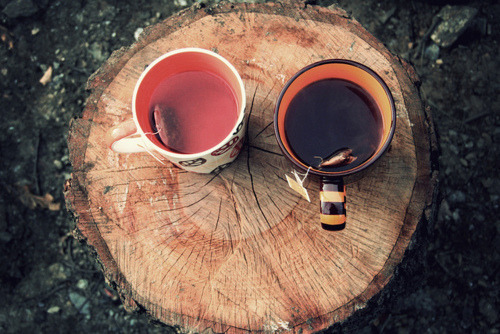 coyotegold:  oregon-dreaming:  The dark tea is for me, the light is for you.   ^ I love your url, fellow Oregonian!