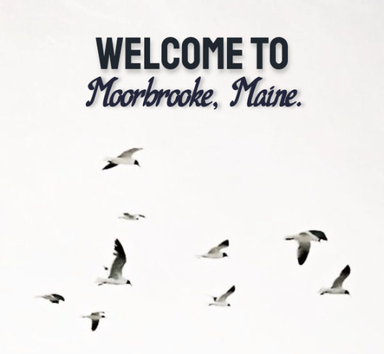 welcome to moorbrooke, the sunny beachside town located in maine, usa. the town has a population of 50,000 but it is gradually growing day by day. the town has been filled with life since it was established in 1683 and new residents are always welcome in this friendly town. we hope you enjoy your stay!welcome to moorbrookehq! #appless rp#town rp#plotless rp#oc rp#city rp