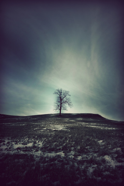 microwalrus:  havent-got-a-prayer:  cwphoto: Winter is almost over. It doesn't really matter, though. This is going to be the coldest summer yet. I can feel it.When I leave this area, and people ask me what the midwest was like, I will describe this photo.  I shot it yesterday in Warsaw.