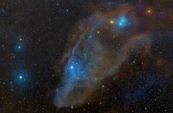 galactic-centre:  IC 4592: A Blue Horsehead   This complex of beautiful, dusty reflection nebulae lies in the constellation Scorpius along the plane of our Milky Way Galaxy. Its overall outline suggests a horsehead in profile, though it covers a much larger region than the better known Horsehead Nebula of Orion. The star near the eye of the horse and the center of the 5 degree wide field, is embedded in blue reflection nebula IC 4592 over 400 light-years away. At that distance, the view spans nearly 40 light-years. The horse's gaze seems fixed on Beta Scorpii, also named Graffias, the bright star at the lower left. Toward the top right, near the horse's ear, is another striking bluish reflection nebula, IC 4601. The characteristic blue hue of reflection nebulae is caused by the tendency of interstellar dust to more strongly scatter blue starlight.
