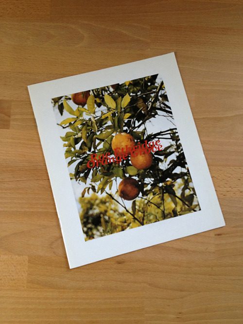 disturber-magazine:  Roe Ethridge Orange Grove RARE Monograph Self Published, 2005