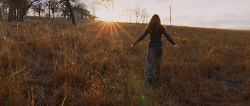 Terrence Malick's To The Wonder A highly romantic film filled with plenty of traditional romantic imagery like the ruckenfigur trope.