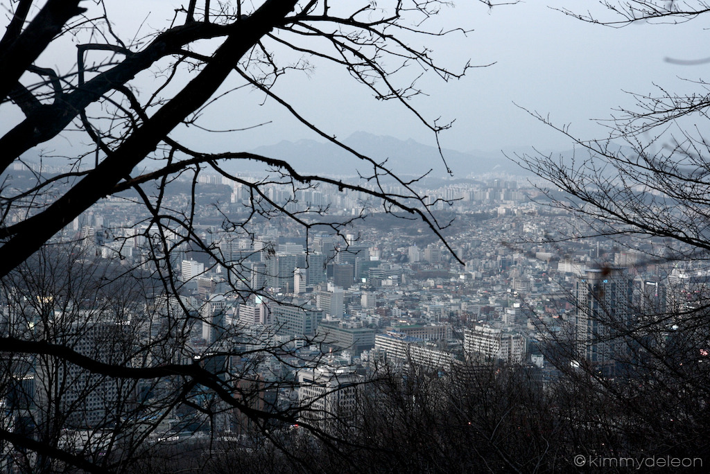 Seoul City | N Seoul Tower, Seoul, South Korea A panoramic view of the city from the garden of N Seoul Tower. I love how the winter tree branches crawls its silhouette in the city view.