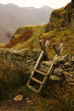 bluepueblo:   Stone Wall Ladder, Cumbria, England photo via called