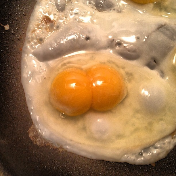Two yolks, one egg #breakfastofchampions