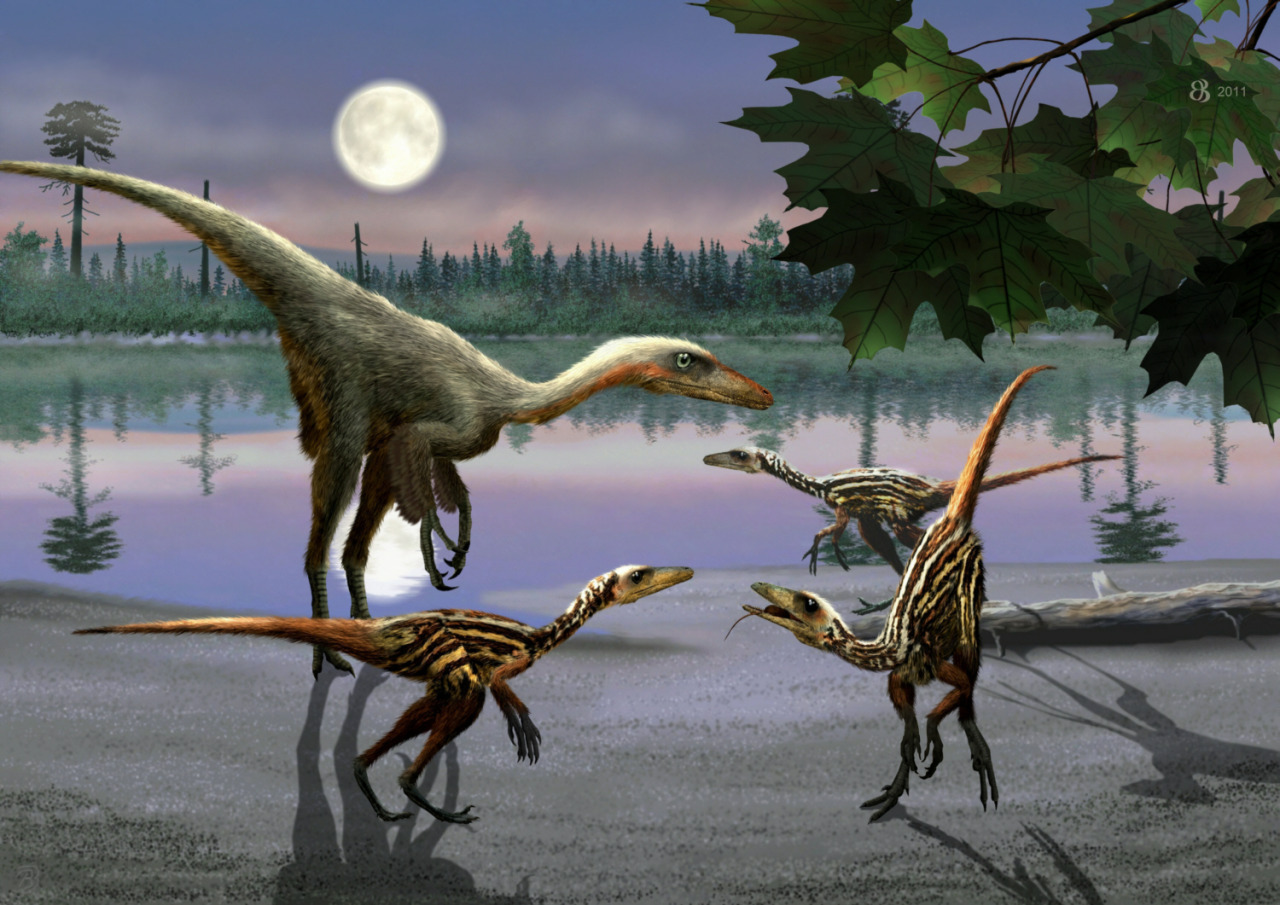 Troodon formosus by Taena-Doman