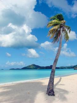 saxonartur:  Valley Church Beach, Antigua