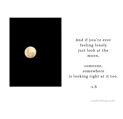 riseafterfalling:  lonely moon.