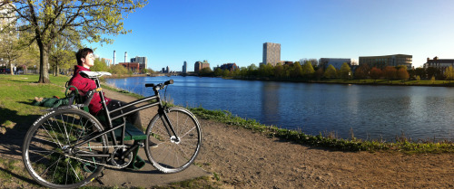 Montague Boston folding bike on the Charles River.