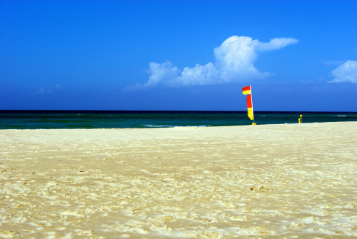 Between the flags, North Kirra beach