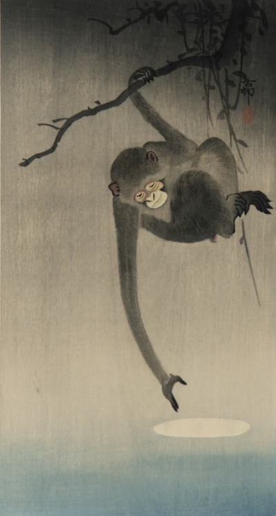 kvetchlandia:  Ohara Koson (Shoson)     Monkey Reaching For Reflection of the Moon     c.1910