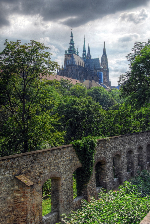 allthingseurope:  Prague Castle (by OneFlameintheFire)