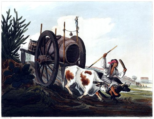 Water cart.  From Picturesque illustrations of Buenos Ayres and Monte Video, written and illustrated by Emeric Essex Vidal, London, 1820.  (Source: archive.org)