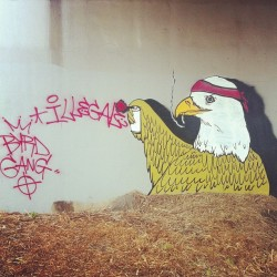 lushsux:  Illeagle the illegal eagle , Byrd gang burrrrrr #graff #graffiti