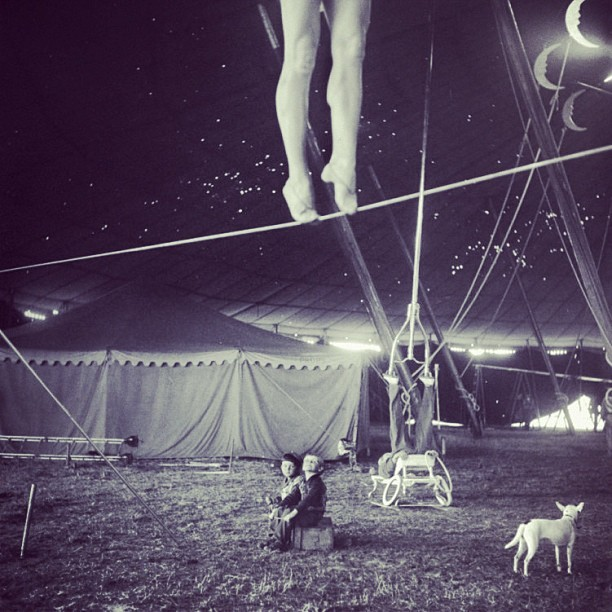 Ringling Bros. Circus, 1949, issue of #Life Magazine. By photographer Nina Leen. #vintage  #photography #circus