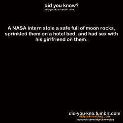 did-you-kno:  Source  This is awesome, however having sex on moon rocks can't be comfortable…unless you're into that kinky masochistic stuff.