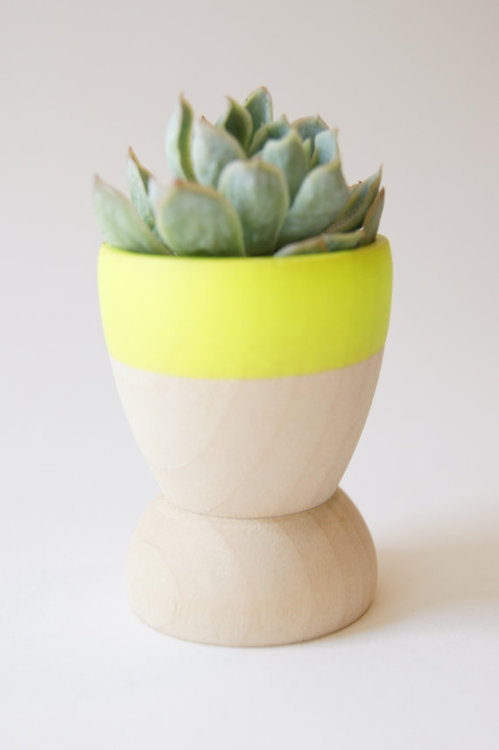 (via Mini Planters set of 5 Neon Yellow modern by WindandWillowHome)