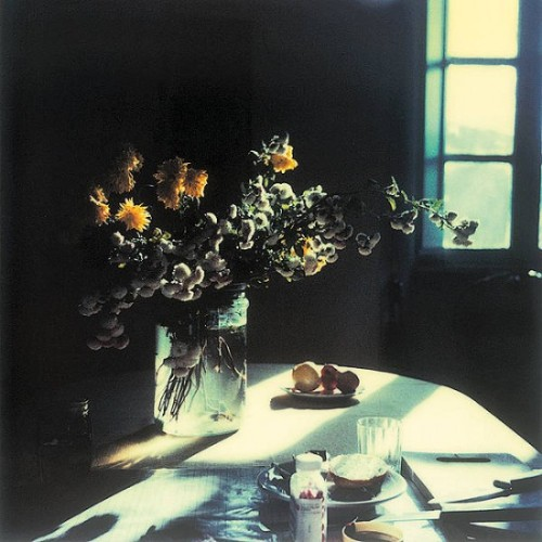 Polaroid by Andrei Tarkovsky from the book Instant Light: Tarkovsky Polaroids from Thames and Hudson. Discovered here thanks to ayjay.