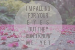myohmymichelle:  lyrics, ed sheeran | Words • Quotes • Sayings on We Heart It - http://weheartit.com/entry/61882872/via/Myohmymichelle   Hearted from: http://pinterest.com/pin/332984966169076939/