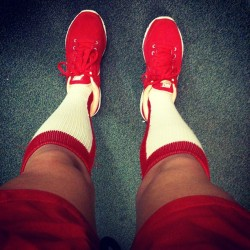 All ready for #highsocksunday! #BIRDS
