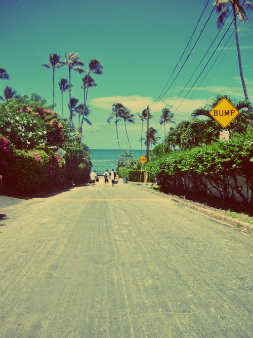 live-the-life-you-loove:  Paradise | via Tumblr on We Heart It - http://weheartit.com/entry/57396086/via/inesliite