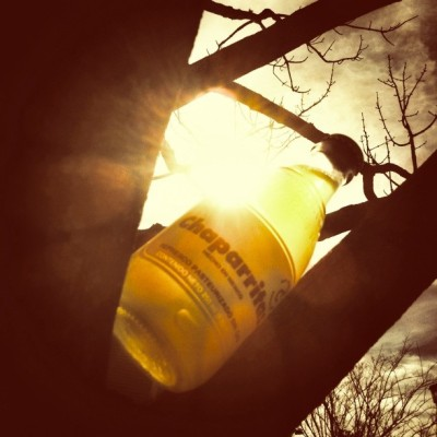 tried a #chaparritos #pineapple #glassbottlesoda. 'twas okay. #trees #sky #sun #soda #pop #sodapop #nature