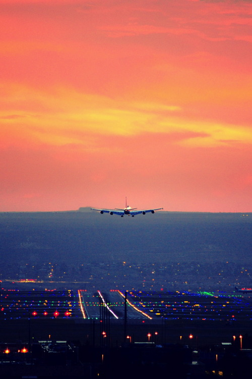 willyoulovemeh:  Let's go somewhere we haven't been.
