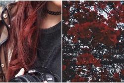flowers red hair spring body comparison stringerci i've changed url