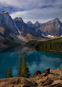 oecologia:  The Majestic Moraine (Banff National Park, Canada) by Trevor Anderson,