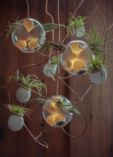joshuaowen:  Glass pendants that double as planters by Omer Arbel of Bocci