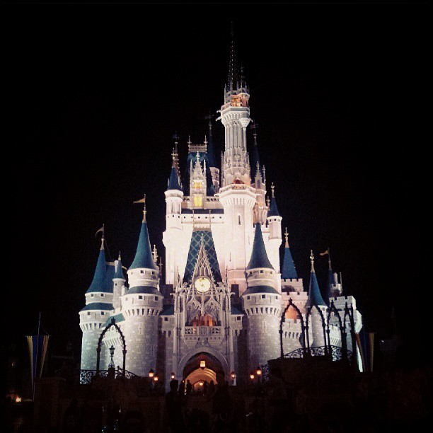 Castle at night (at Magic Kingdom® Park)