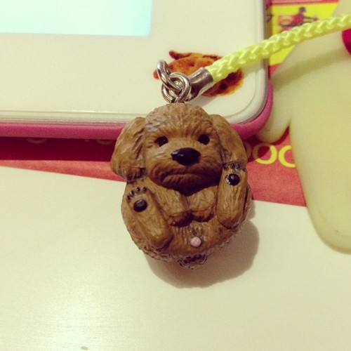 Kawaii buy: Poodle capsule toy from Yeouido Park in Seoul (got it on my second try! Score!). Look at his teeny-tiny peen! Lol. #kawaiibuy
