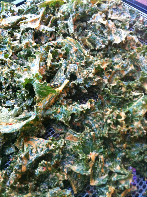Smoked Nacho Cheese Kale Chips!! Brace yourself, These are addictive. I love keeping kale chips around the house because I am a grazer and snack enthusiast! I could not keep these at my restaurant as they would FLY off the shelf! These are a great treat for ANYONE and I feel confident slapping a 'Taste Guarantee' sticker on these bad boys! Even you picky eaters will LOVE and your children will have found a love of Kale. I have rules for my raw recipes. #1 Use as minimal amount of ingredients as possible. I like to stick to the 5 ingredients or less rule….. It doesnt ALWAYS work :) #2 Kid approved. If my recipes can be kid approved… I feel like I have won the lottery. I like sophisticated flavors BUT… I am HUGE with child nutrition outreach. #3 They must be simple with easy to follow directions and made with common ingredients. My goal is to make REAL food for REAL people. Everyday, busy people like you and I! So here they are. I hope you enjoy as much as I do! Equipment needed: Blender  Dehydrator or oven Ingredients:  1/4 cup Raw Tahini  1/4 cup Nutritional Yeast  5 cloves Garlic  1 cup chopped Red Onion  2 small Red Bell Peppers  1 Jalapeno (use only 1/2 the seeds)  2 cups Raw Cashews (soaked 5 minutes)  1/2 Tsp Cayenne  1/2 Tsp Smoke Paprika  Dash of pink salt   1/4 cup Water if needed  Toss all ingredients in a blender (putting liquids and high water content ingredients first) and blend. If you do not have a high speed blender, blend approx 5 times! This mixture will cover approx 2 to 3 bunches of Kale. Break the Kale into bite sized pieces and massage Cheeze through out for 2 minutes. Deydrate at 118 for 24 hours. I use every tray in my 9 tray Excalibur. If using a oven, heat at lowest setting possible and bake until crispy! Enjoy :)