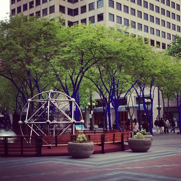#bluetree #bluetrees #seattle #downtownseattle #downtown #shopping #igers #cool #art #blue
