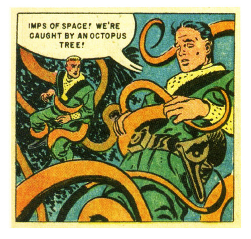 The Octotree (by paul.malon)