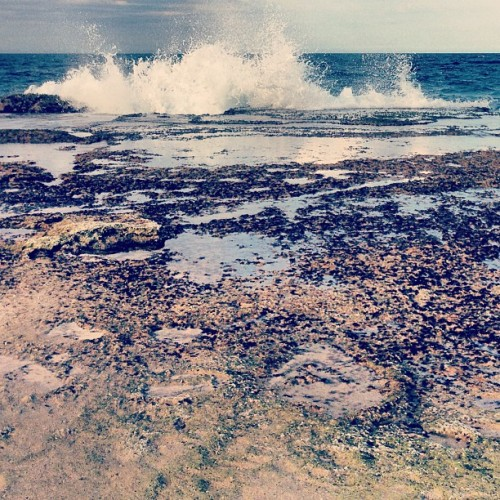 rough sea #instagram #iphonegraphy #igpuertorico #instagramers #igers #love #isabela #ocean #water #front (at Villa Pesquera Isabela)