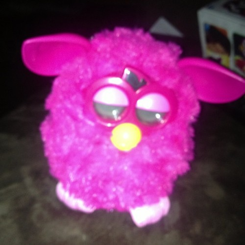 @mandymonster95 gave me a #furby to mind while she is away. Let the games begin.