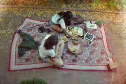 kidhiu:  the picnic i had with my friends today :)