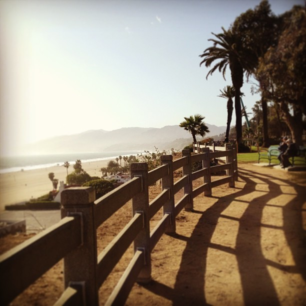 #paradise  (at Santa Monica Bluffs)