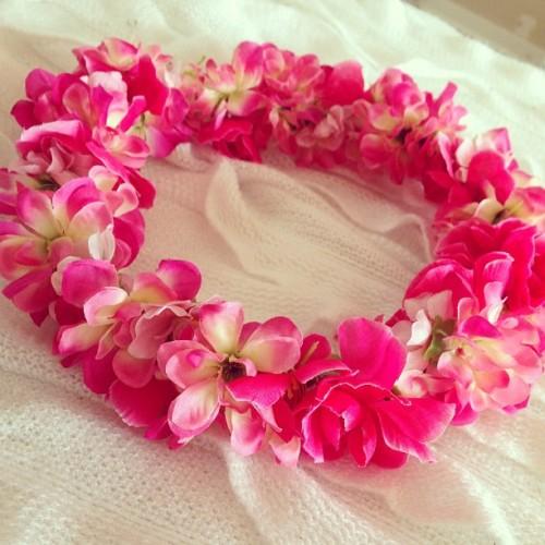 rosy rosy blog