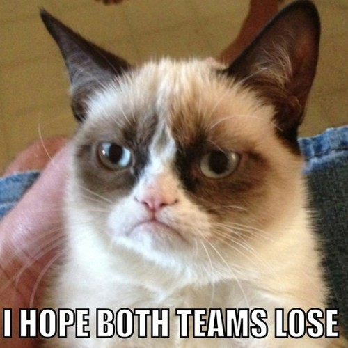 Grumpy Cat. Super Bowl MVP #Super Bowl #SB47 #NFL #Grumpy Cat #meme #cats