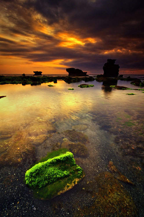 ayustar:  smelling—the—roses:  llbwwb:  Mossy Rock (by eggysayoga)  Serene✧Peaceful✧Nature ✻Nature, Photography, Art✻