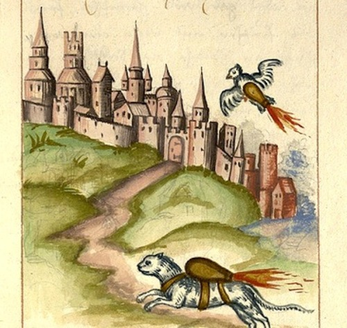 A cat and pigeon strapped with rocket bombs from a 1584 German warfare manual. Found via BibliOdyssey, and digitized by Penn.
