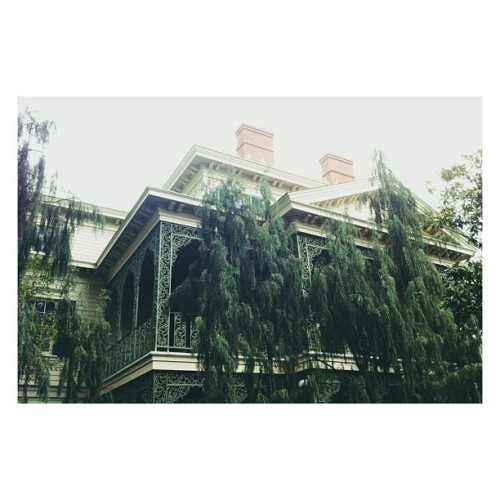 My house #nbd (at Haunted Mansion)