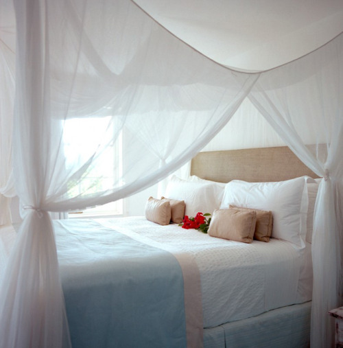 another dreamy canopy bed (via desire to inspire -Jessica Antola)