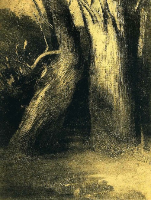 "Odilon Redon  (1840-1916) ""Deux arbres"" (Two Trees), 1875  (via soircharmant, supersede-stairsofgold, les-sources-du-nil)"