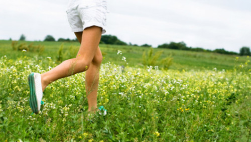 10 first steps to lighter living Itching to go green and not sure where to start? Try these simple ideas.
