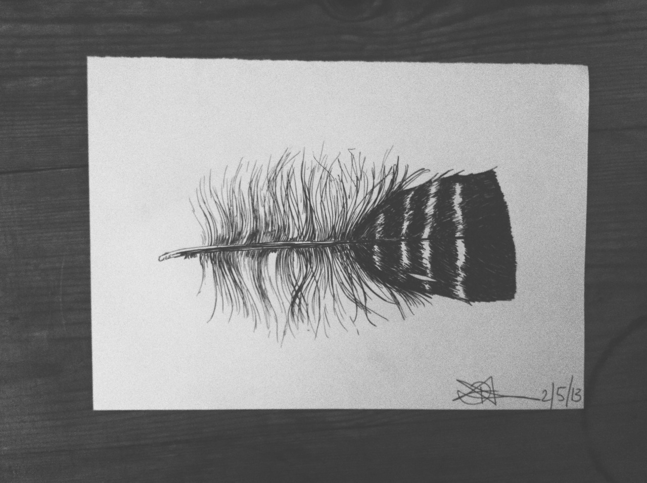 A feather I have drawn   www.icefloestore.etsy.com