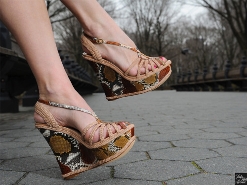 10022-shoe:  The perfect python. Alexandre Birman.Photo by Kristen Somody Whalen